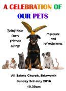Pets Service 2016